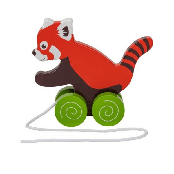 Žival na kolesih mačji panda