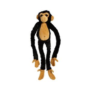 Viseča opica šimpanz