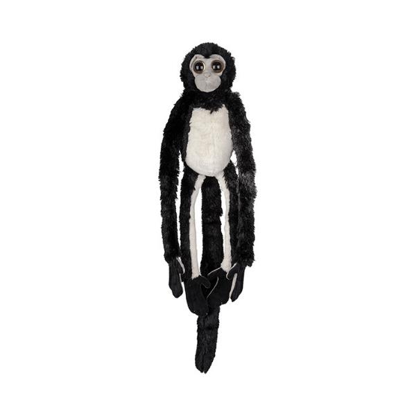 Viseča opica brezpalčarka
