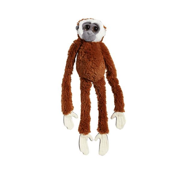 Viseča opica gibon rjav