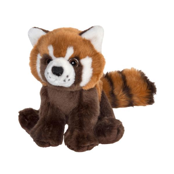 Mačji panda Plan M