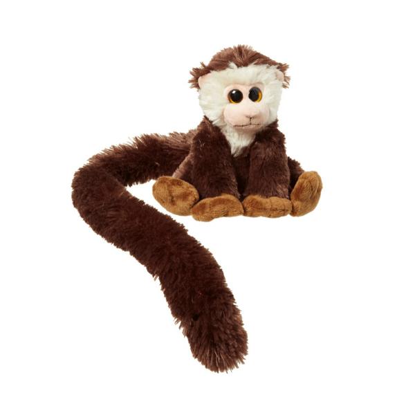 Opica z dolgim repom kapucinka