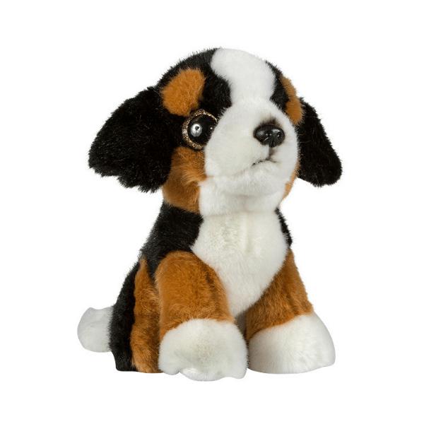 Glitter očki bernski planšarski pes