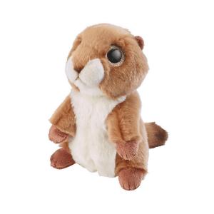 Glitter očki prerijski pes